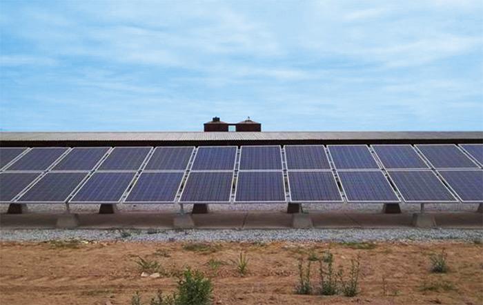 Energia solar agropecuario